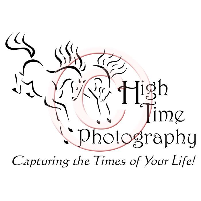 Custom logo design small busines logos horse farm dog rescue pet high time photography logo publicscrutiny Choice Image