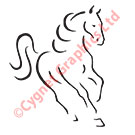 Vector Front Angle Horse Logo